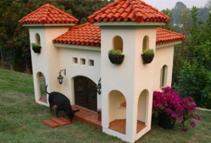 Casa castillo para perro