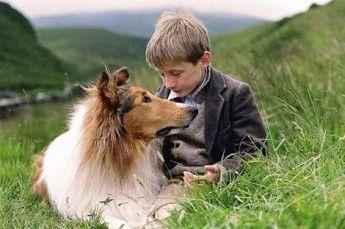 los-perros-famosos-del-cine_103_1