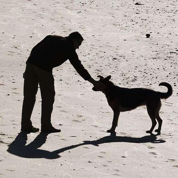 el_hombre_y_el_perro