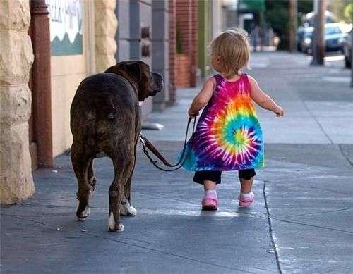 Pasear al Perro con Correa