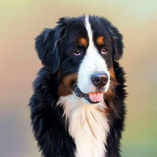 dog-287420_640