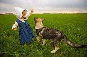 Cuáles son las razas de perros más aconsejables para los niños