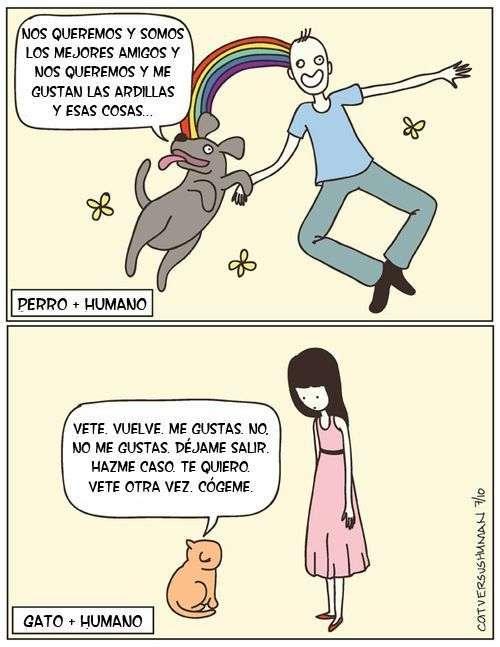 Humano + Perro + Gato