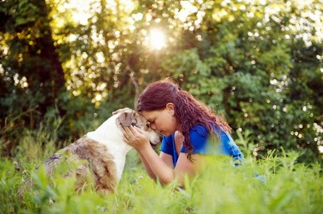 Conocer bien al perro que vas a elegir, te ayudará a saber si encaja en tu vida