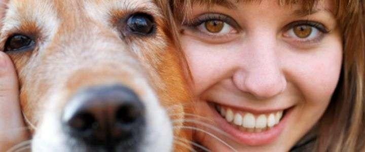 El no eelegir al perro correcto para tu vida, puede hacer que con el tiempo tengas que abandonarlo