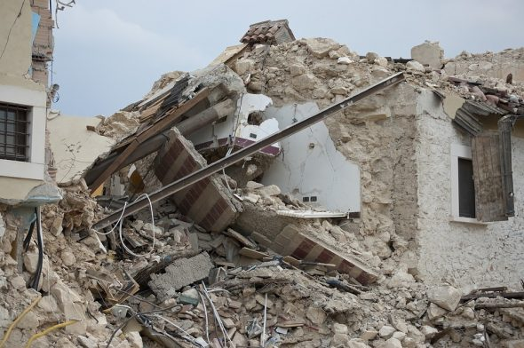 Perro Rescatado entre los Escombros en México