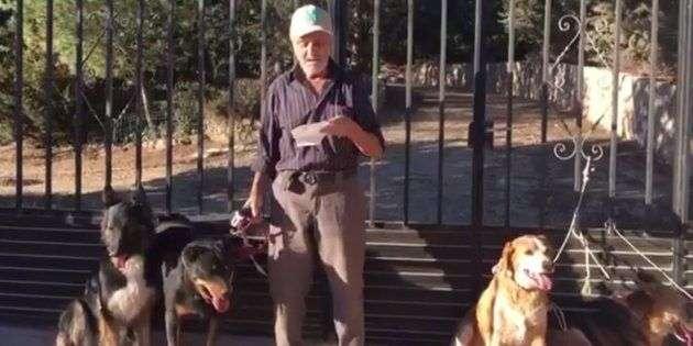 Santiago de 87 Años Busca Dueños para Sus Perros